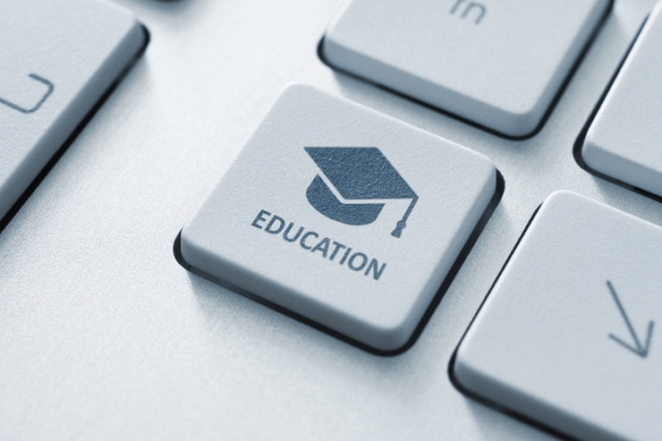 Dinamización de plataformas educativas digitales